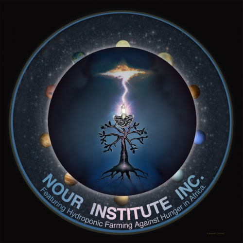 Nour Institute Inc